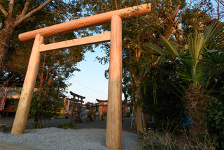 toriii8.jpg